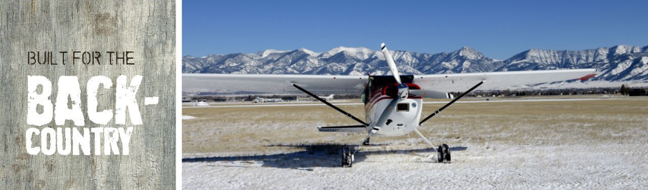 Backcountry plane in front of mountain range