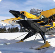 Save on a Backcountry Prop